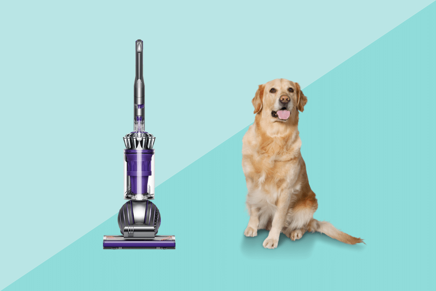 best vacuum for dog hair