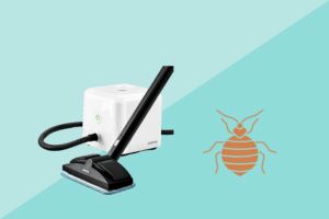 best steam cleaner for bed bugs