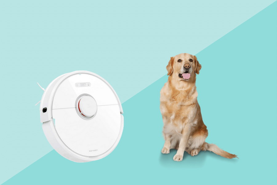 best vacuum and mop for pet hair